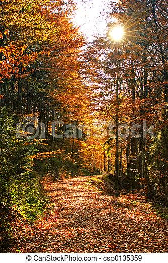 automnes - csp0135359