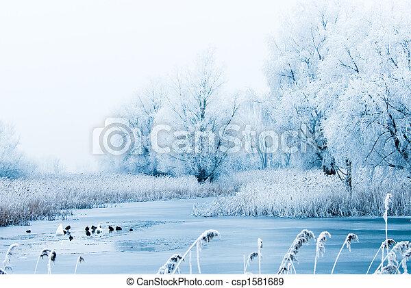 beau, paysage hiver - csp1581689