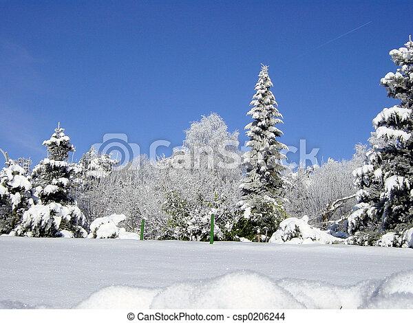 blanc, janvier - csp0206244