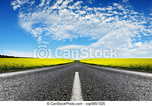 canola, route - csp0651525