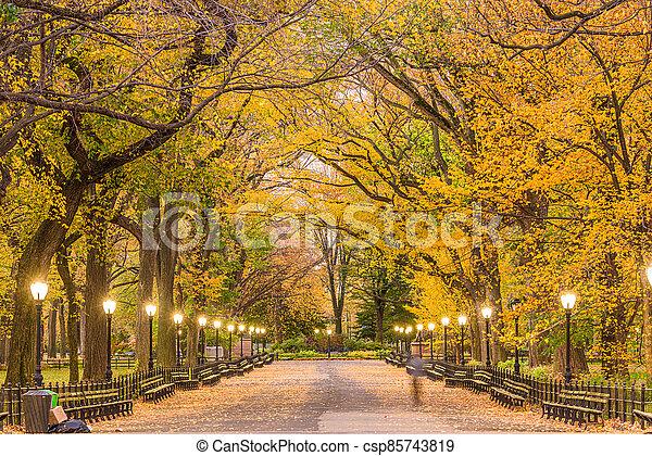parc central, centre commercial, ville, new york - csp85743819