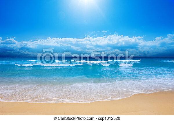 plage, paradis - csp1012520