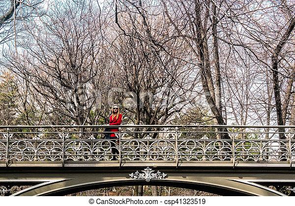 pont, central, parc ville, york, croisement, nouveau, girl, manhattan - csp41323519