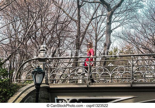 pont, central, parc ville, york, croisement, nouveau, girl, manhattan - csp41323522