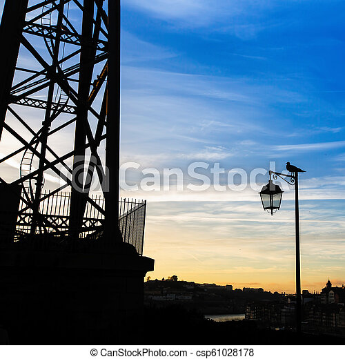 soir, silhouette, porto, portugal., lampe, time., rue, oiseau - csp61028178
