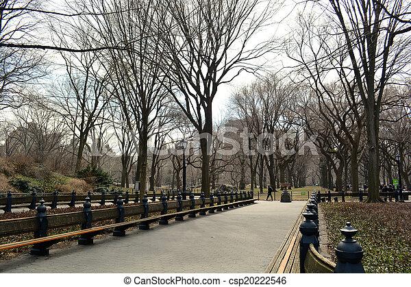 ville, central, 22, -, parc, york, nouveau - csp20222546