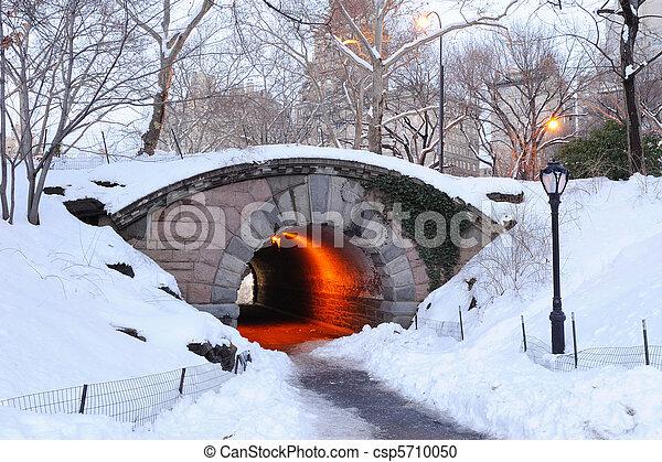 ville, central, hiver, parc, york, nouveau, manhattan - csp5710050