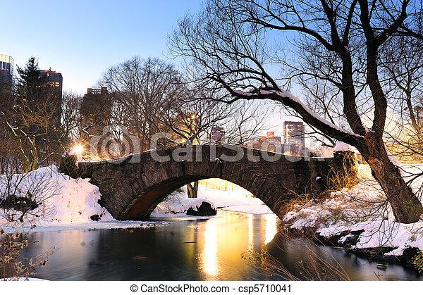 ville, central, hiver, parc, york, nouveau, manhattan - csp5710041