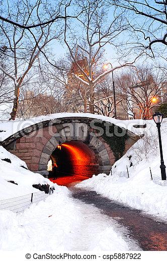 ville, central, hiver, parc, york, nouveau, manhattan - csp5887922