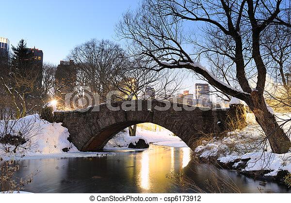 ville, central, hiver, parc, york, nouveau, manhattan - csp6173912