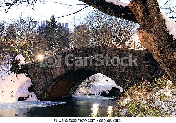 ville, central, hiver, parc, york, nouveau, manhattan - csp5962883