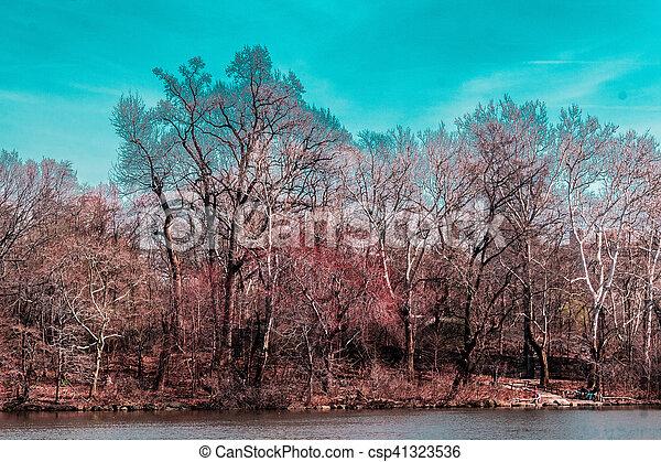 ville, parc central, arbres, york, nouveau, manhattan - csp41323536